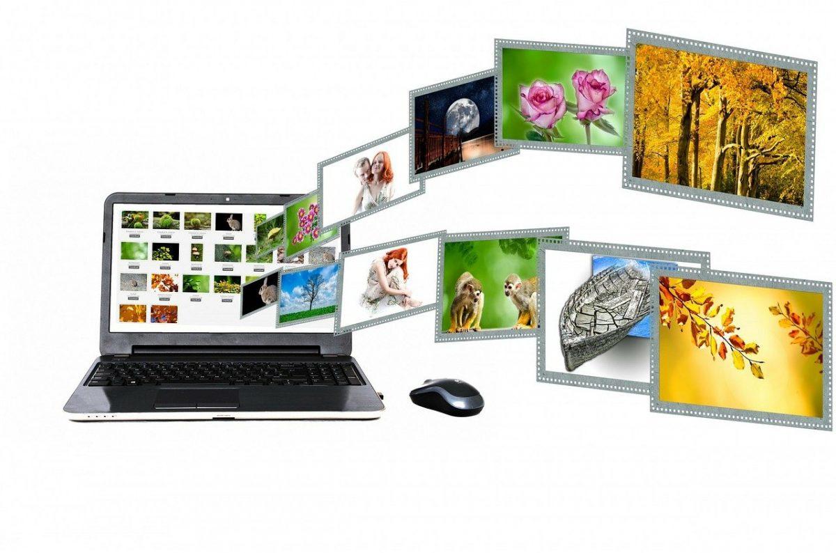 הכירו את מאגרי התמונות המומלצים לשימוש חופשי